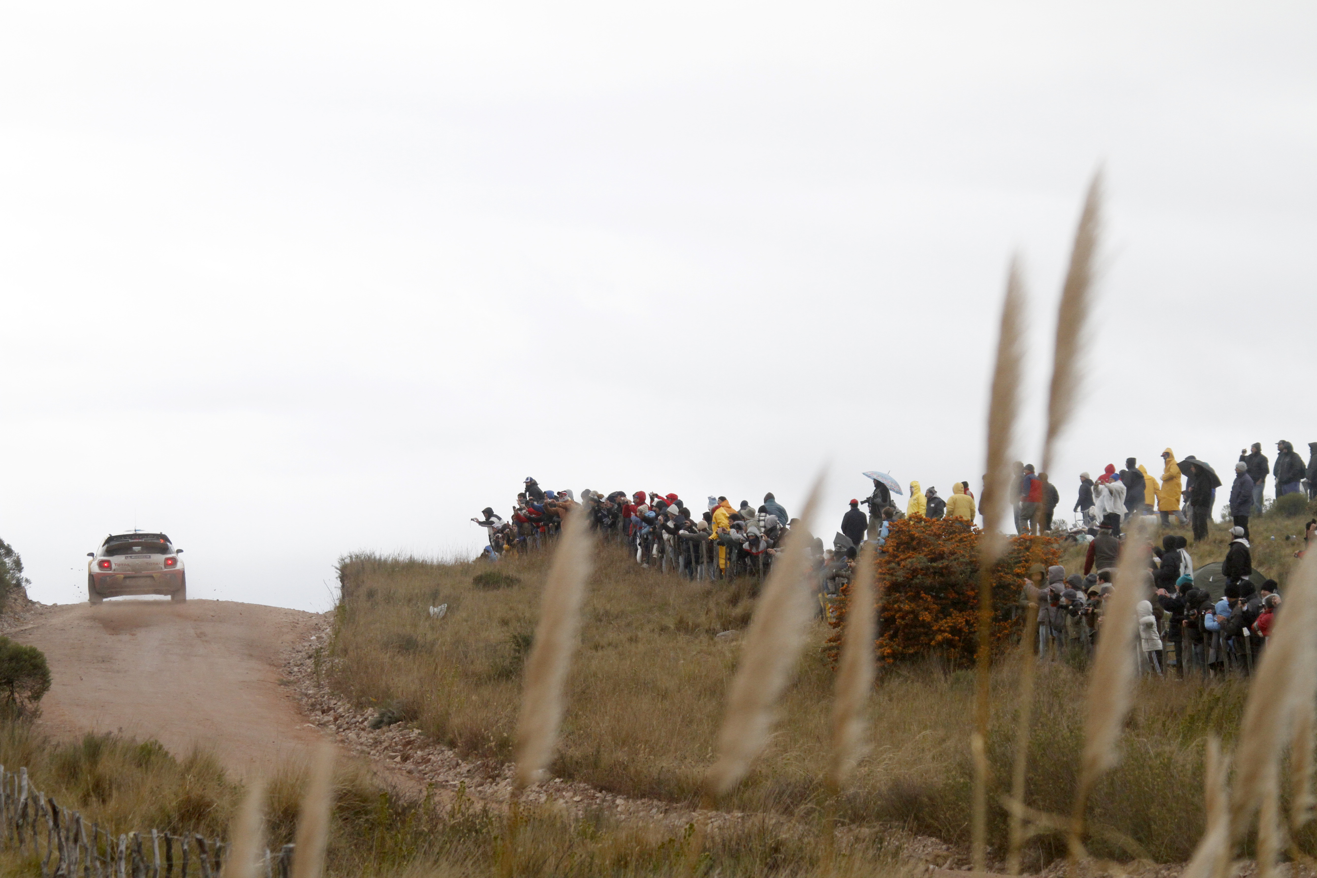 WRC 2012 - Rally Argentina