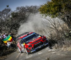 2019 FIA WRC - Rally Mexico - Lappi / Ferme