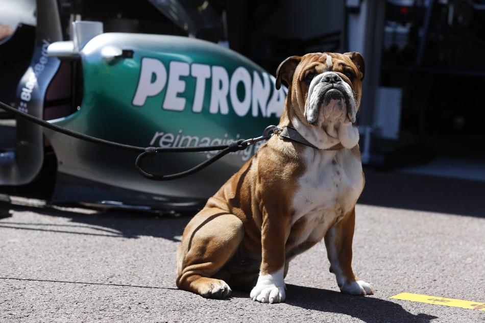 F1 2013 - Monaco Grand Prix