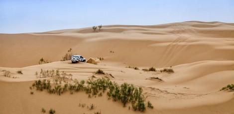 FIA, Cross-country rally, Rally, motor sport