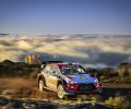 FIA Rally Argentina - T. Neuville / N. Gilsoul