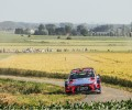 Rally Ypres - T. Neuville / N. Gilsoul